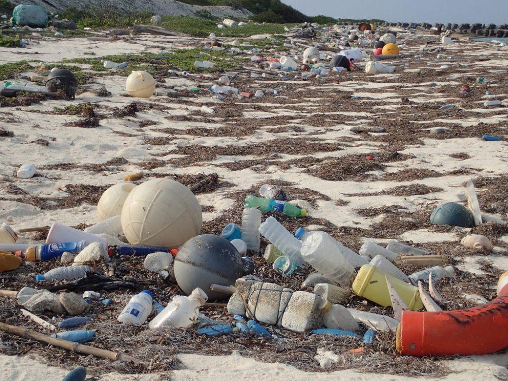 海灘垃圾圖2